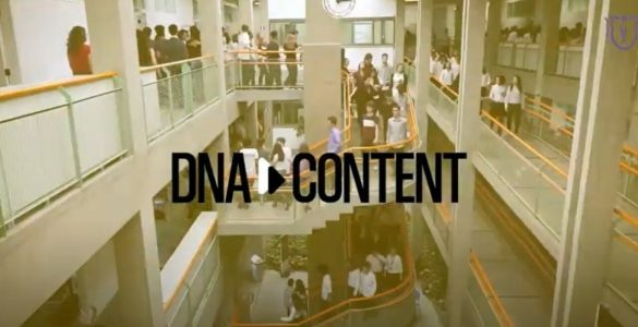 dna content - j&f - canal rural